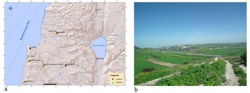 Figure 1. a): Map indicating the location of EQS and other Epipalaeolithic sites in the region; (b): view of the site from the piedmont of Mount Carmel, looking north.