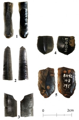 Figure 3. New discoveries of obsidian bladelets: 1) MS21b; 2) MS7; 3) 'Habitation' 1; 4) BMD55; 5) H8.