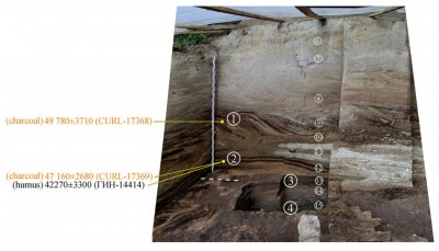 Figure 3. Khotylevo 1, trench 6-2, eastern profile. Numerals inscribed in small and large circles mark lithological layers and cultural horizons, respectively. Orange dots show the original position of charcoal and humic samples used in <sup>14</sup>C dating.