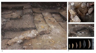 Figure 6. Natufian remains. a): A wall-like structure incorporating a wild cattle horn, facing south; b): a close up of the horn, facing north; c) another installation incorporating a wild cattle horn and a large stone slab; d): microlithic lunates.