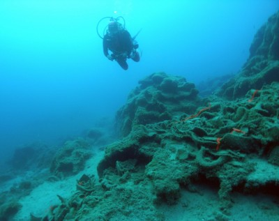 Figure 5. Remains of the seventh-century-BC shipwreck at Kekova Adası, Turkey. The cargo included transport jars drawn from a wide area that appears to have included eastern Cyprus, Corinth, and the region of Samos or Miletus. (see Greene <em>et al.</em> 2011; photo by J. Leidwanger).