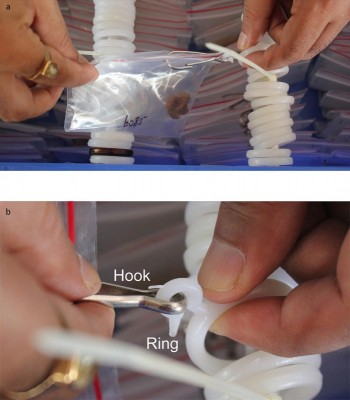 Figure 3. Details of the hook-and-ring system for hanging ziplock bags containing artefacts, with: a) plastic bag attached; b) close-up of the hook-and-ring attachment, showing one method of removal of individual artefacts.